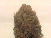 Mendo Purple last round. its a little lighter on the purple but its such good medication that color doesnt even matter.