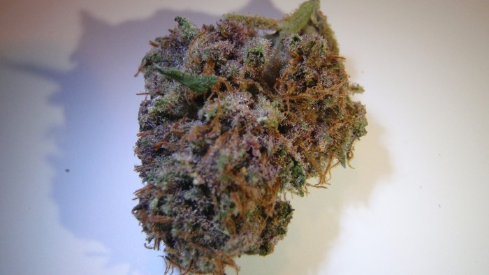 purple-diesel-sativa