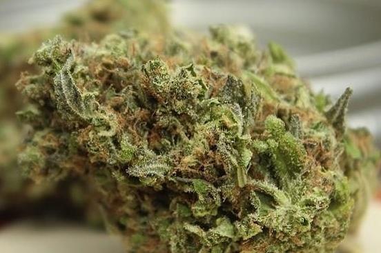 mrnice-weed-1