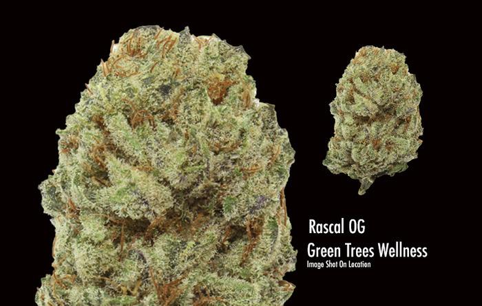 rascal-og-weed-4