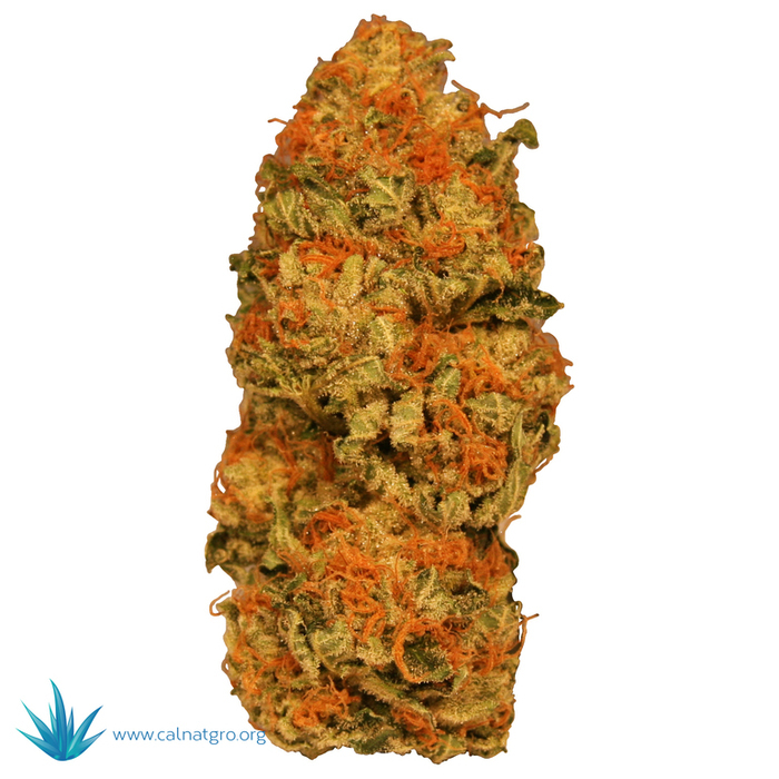 Platinum Kush Medical Marijuana Reviews - THC Finder