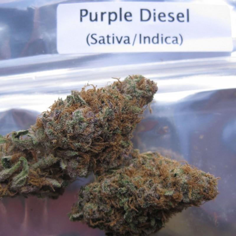 purple-diesel-1