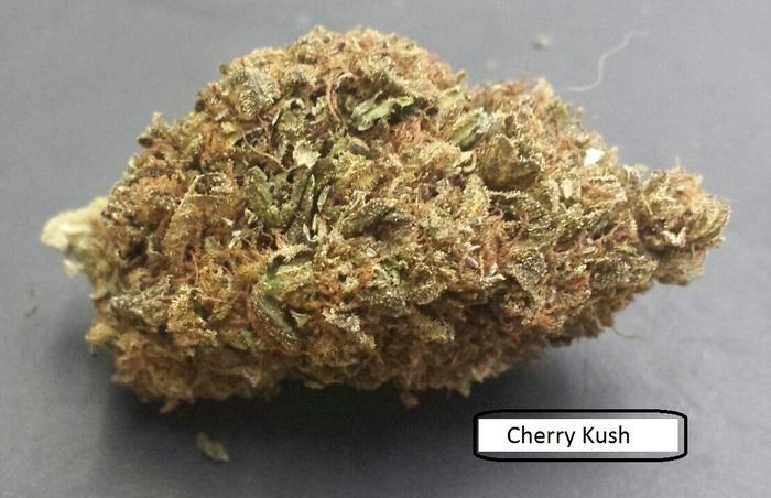 cherry-kush-hybrid-weed-6