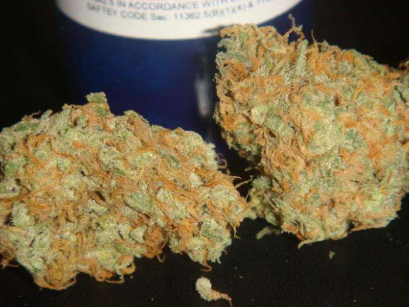 mango-weed-3
