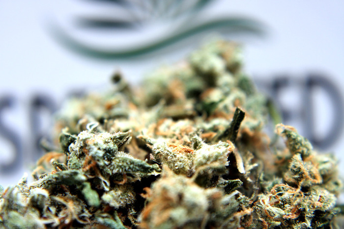 how to avoid getting cold when your smoke marijuana
