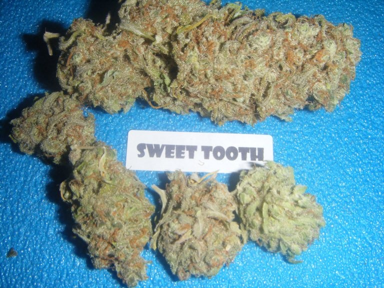 sweet-tooth-weed-2