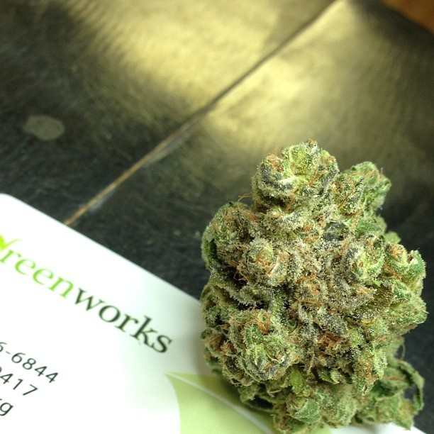 toxic-og-weed-2