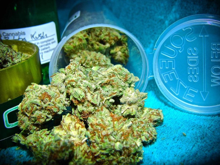 bubba-kush-weed-1