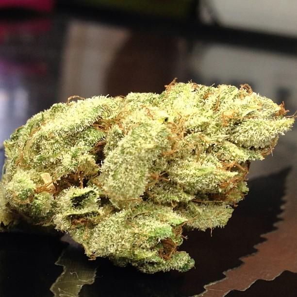 goji-og-weed-2