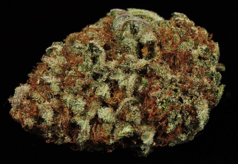 cherry-kush-weed-3