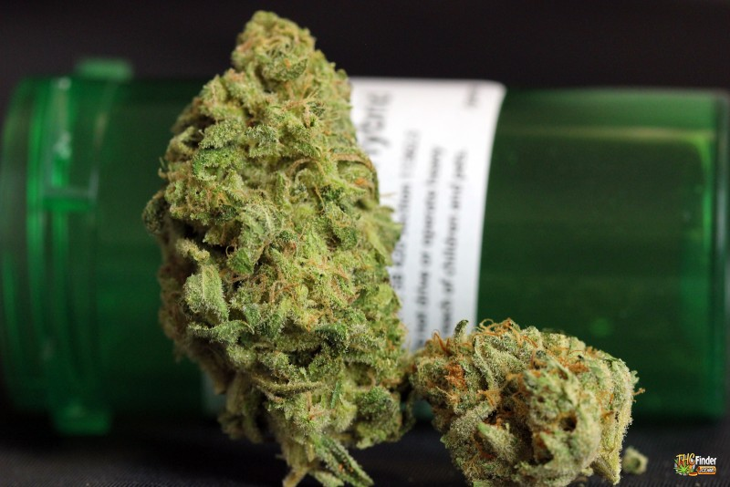tangerine-dream-weed-2