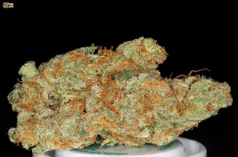 ak47-weed-002