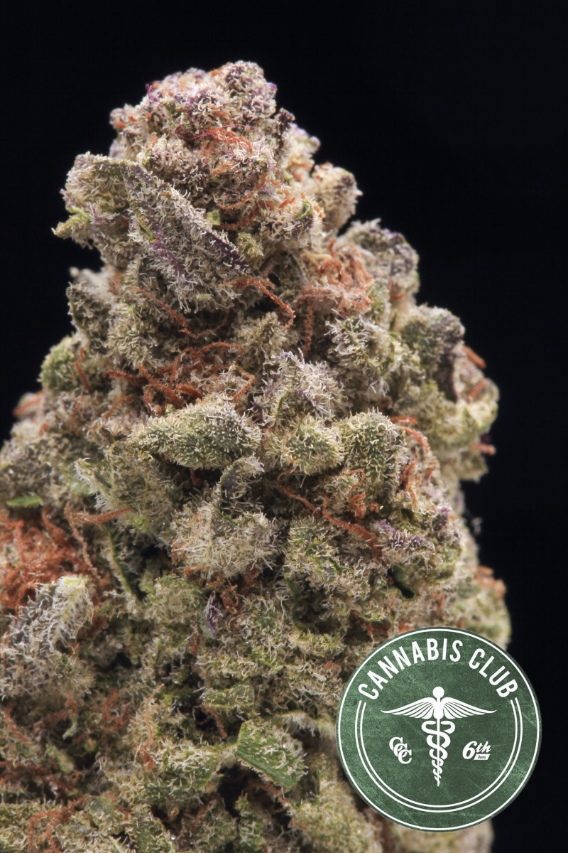 berry-white-hybrid-weed-5