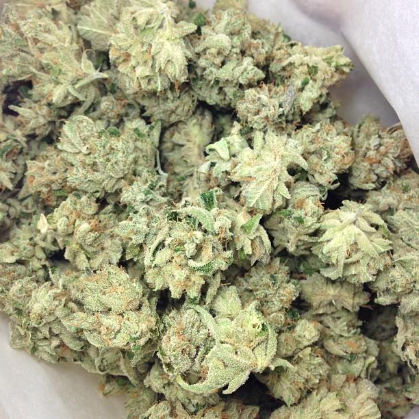 xxx-og-weed-4