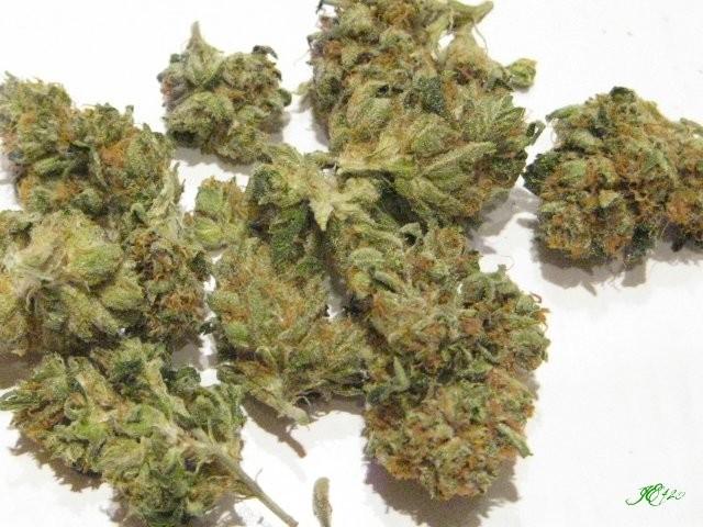 presidential-og-weed-3