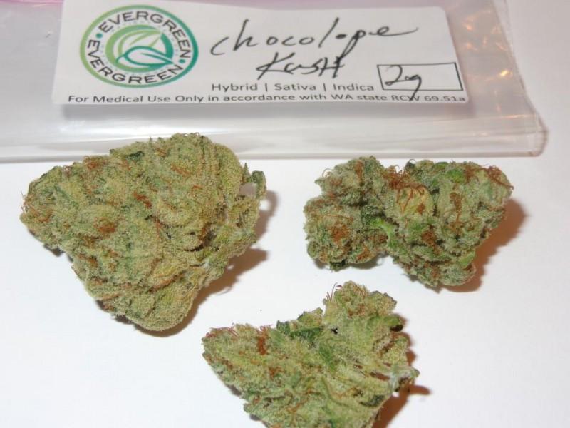 chocolope-2