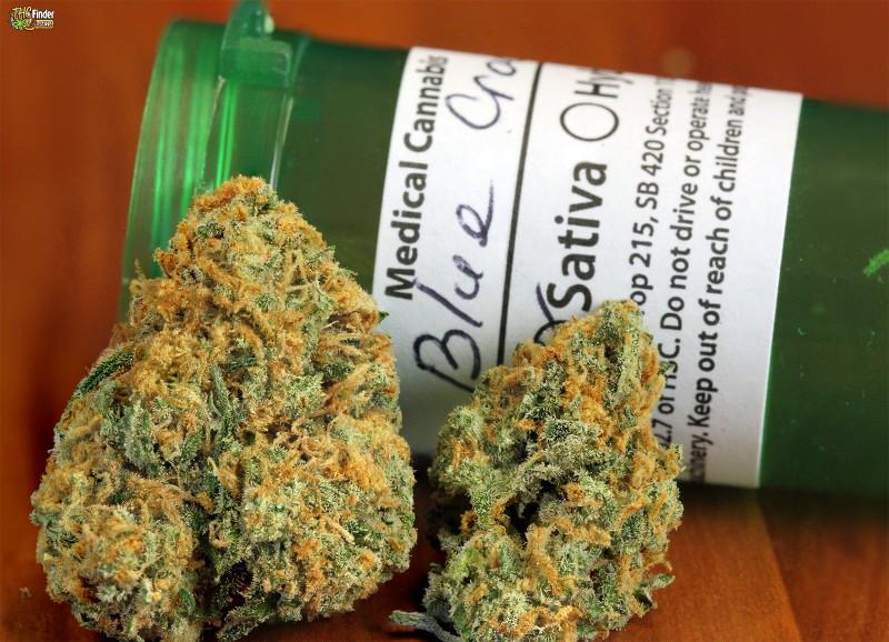blue-crack-weed