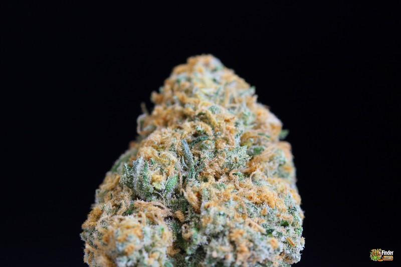 blue-crack-weed-2