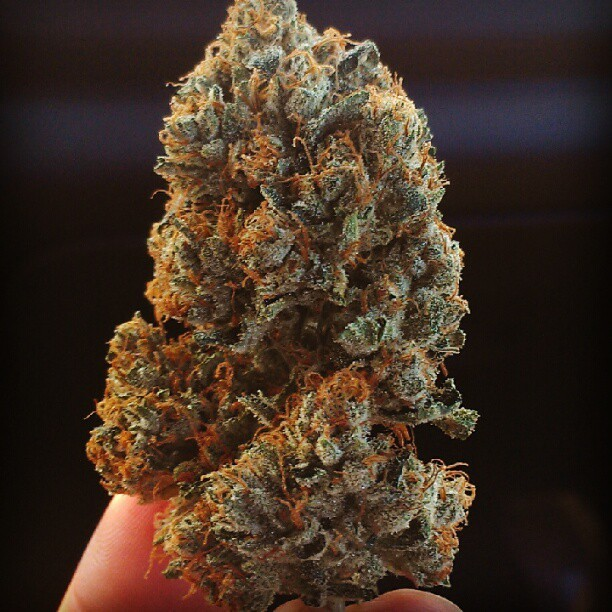 phantom-og-weed-2
