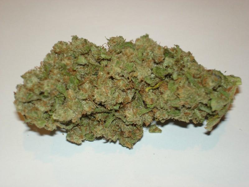 jack-flash-weed-2