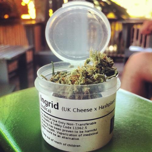 ingrid-weed-2