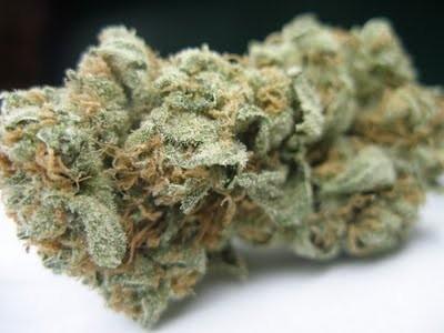 ingrid-weed-4