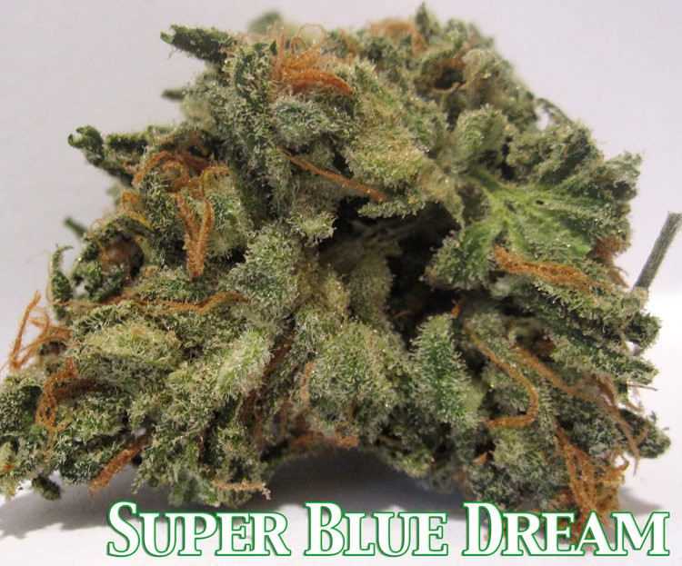 super-blue-dream-3