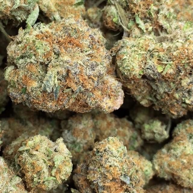 girl scout cookies weed hybrid nugs marijuana blog