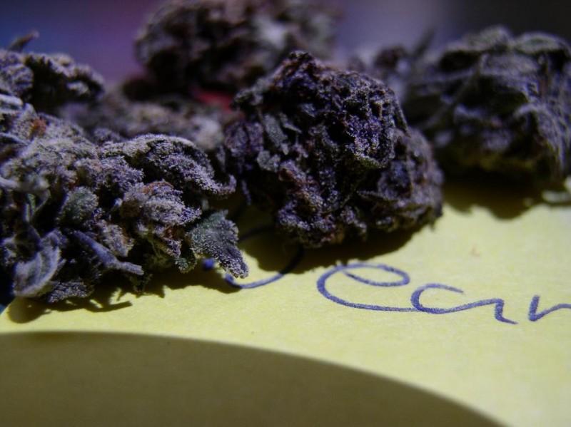 black-mamba-weed-3