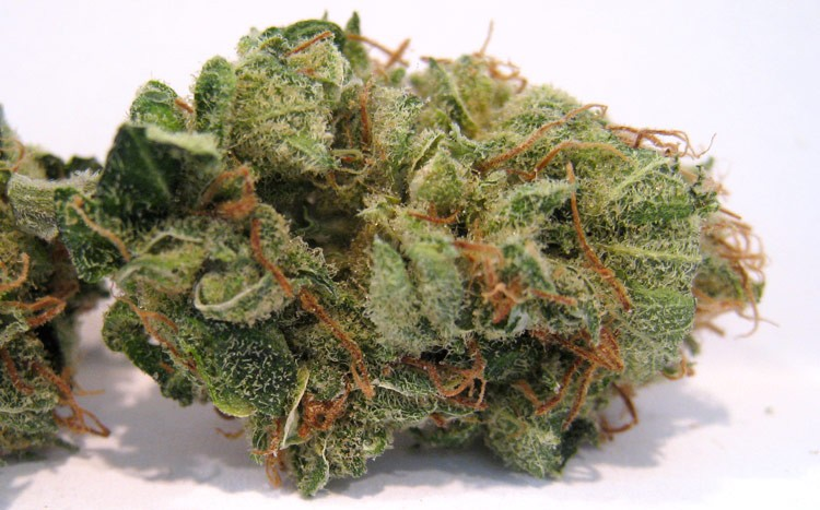 pineapple-express-weed-1
