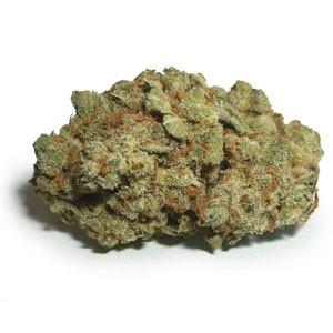 platinum-jack-weed-2