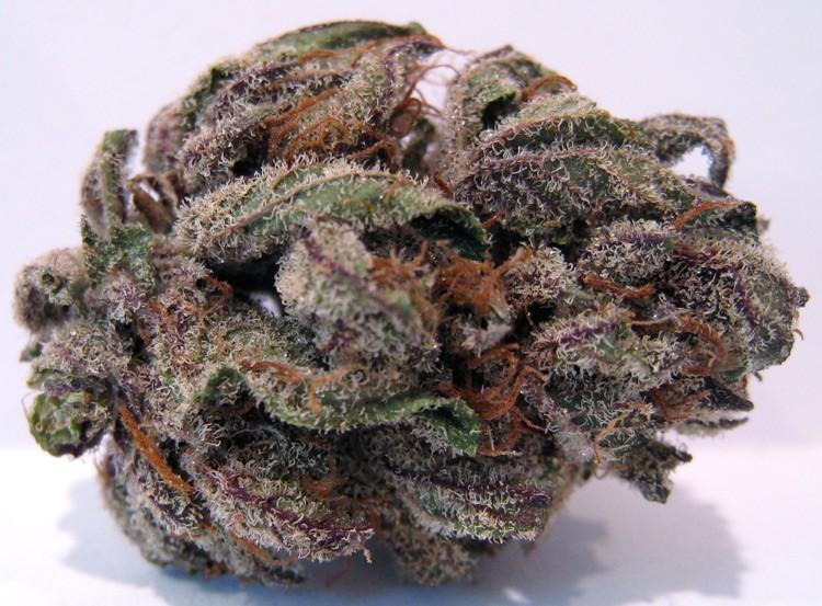 bubba-og-weed-3