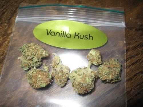 vanilla-kush-weed-6