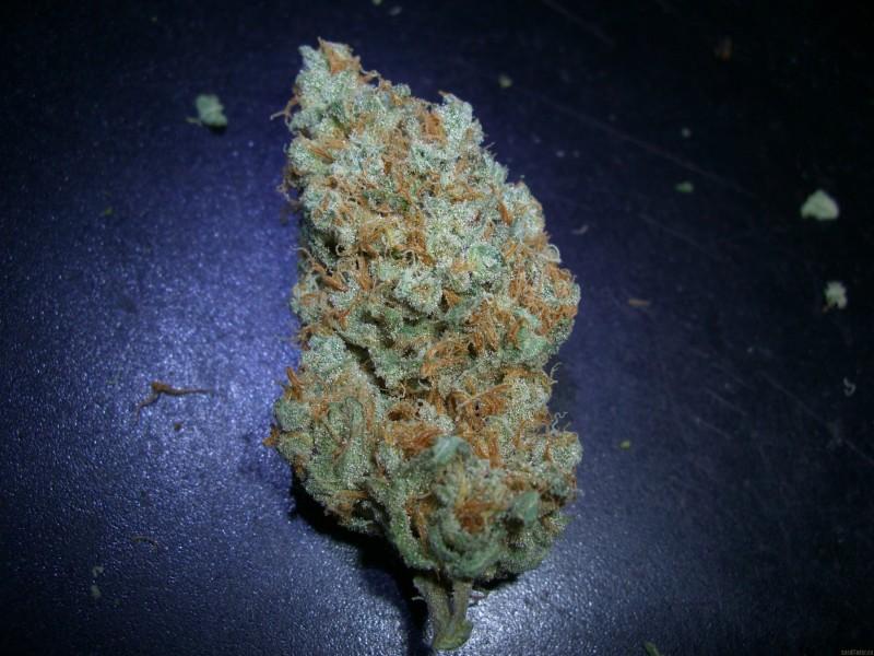 vanilla-kush-weed