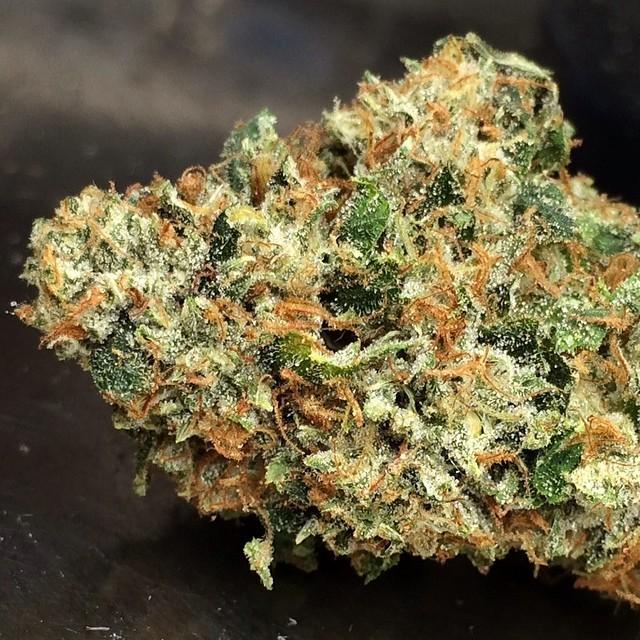 larry-og-weed.-3