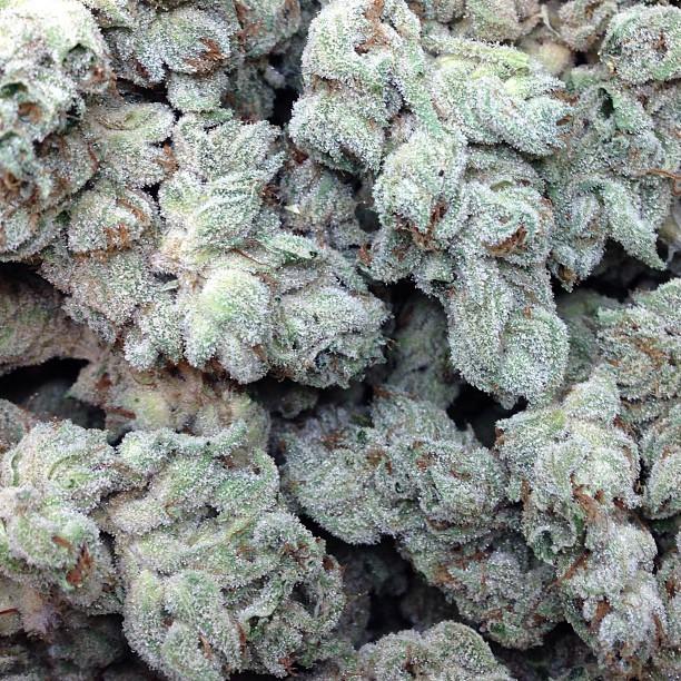 holy-grail-og-weed-2