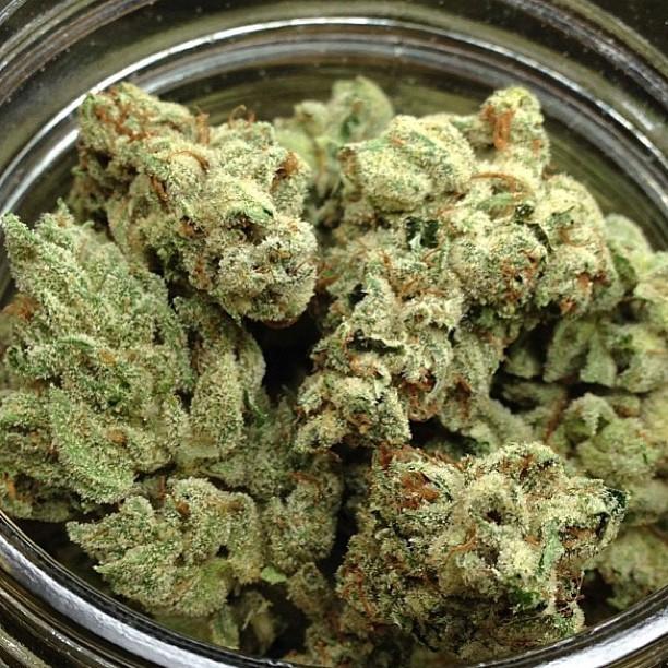 holygrail-weed-1