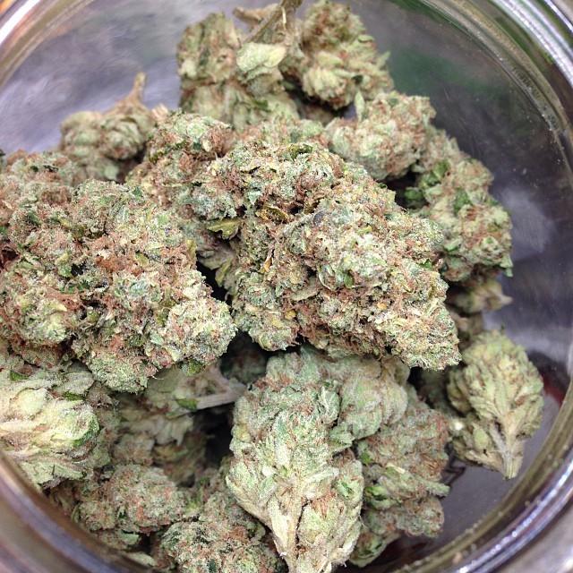 true-og-weed-8