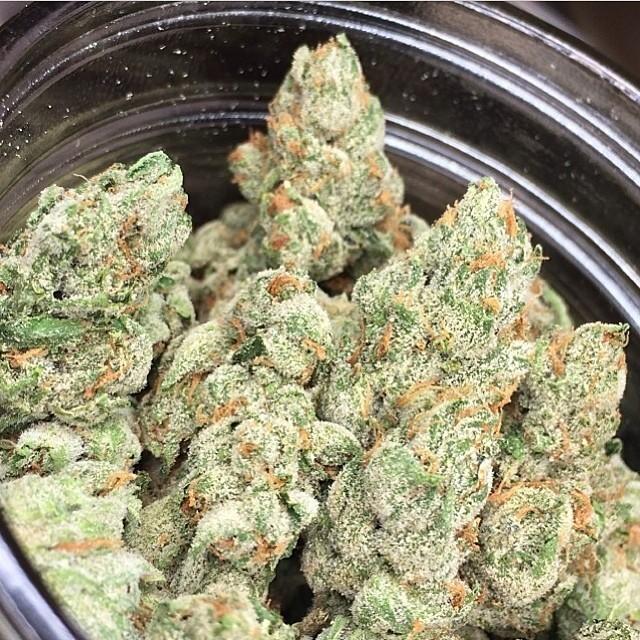 alien-og-weed-5