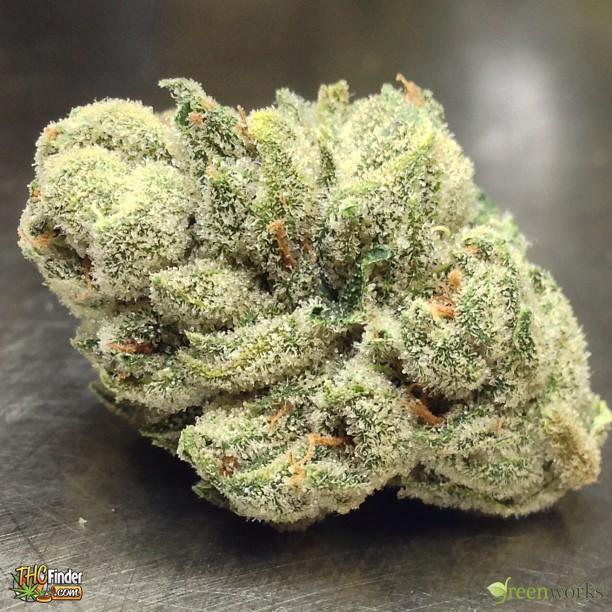 alien-og-weed-4