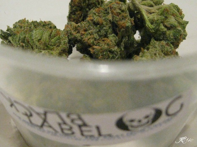 black-label-kush-weed-4