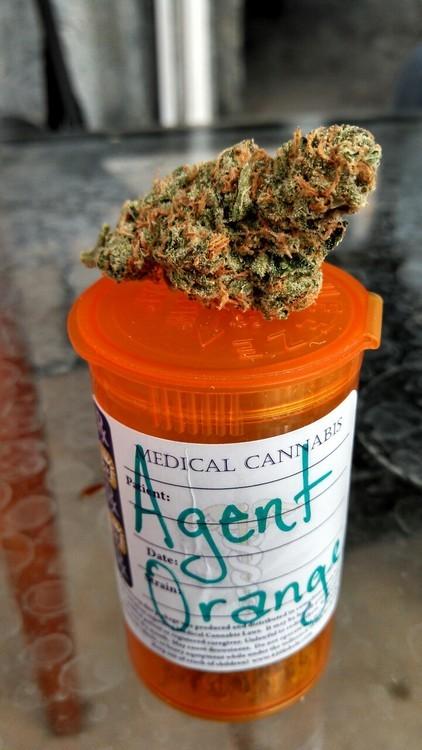 agent-orange-2