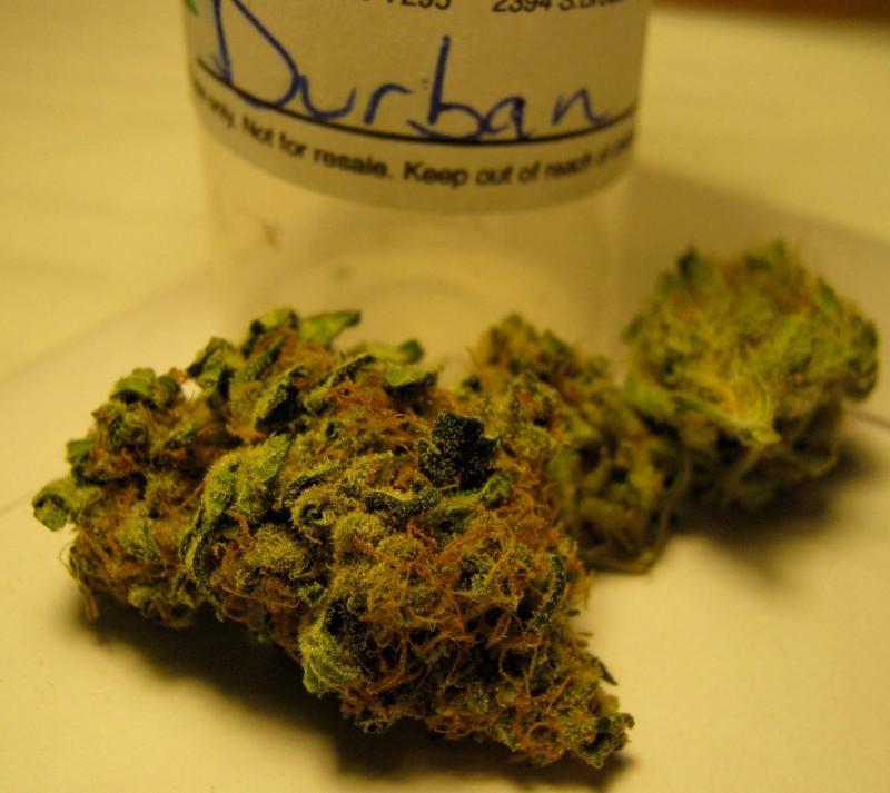 dp-weed-3
