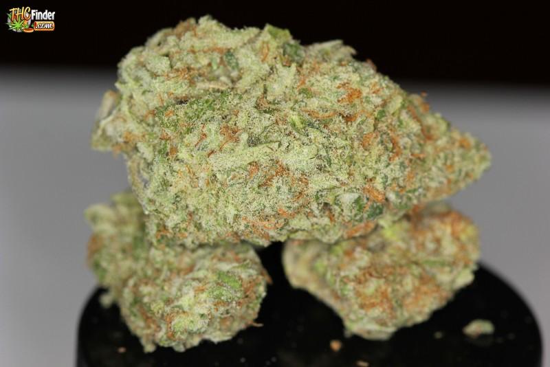 bubblegum-indica-weed