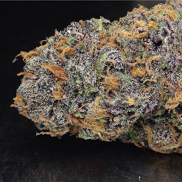 purple-urkle-weed-2