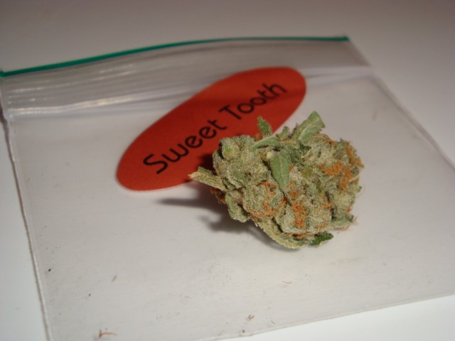 sweet-tooth-weed-4