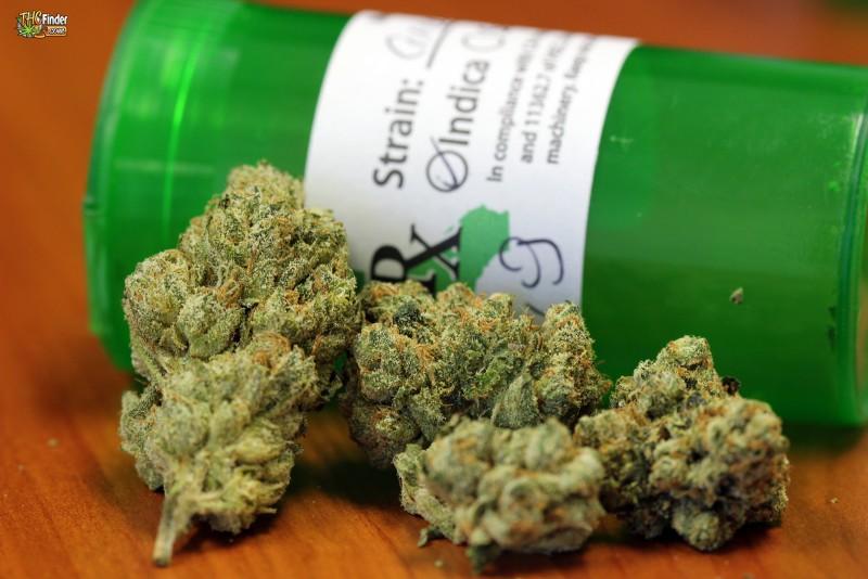 og-weed-sativa-1