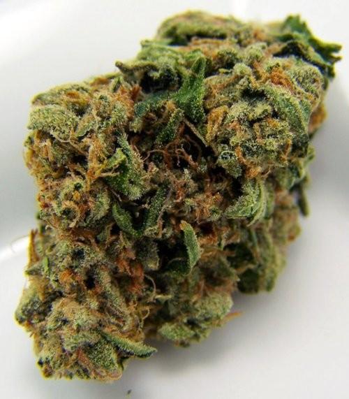 afghan-kush-weed-5