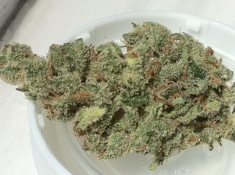 super-jack-weed-4
