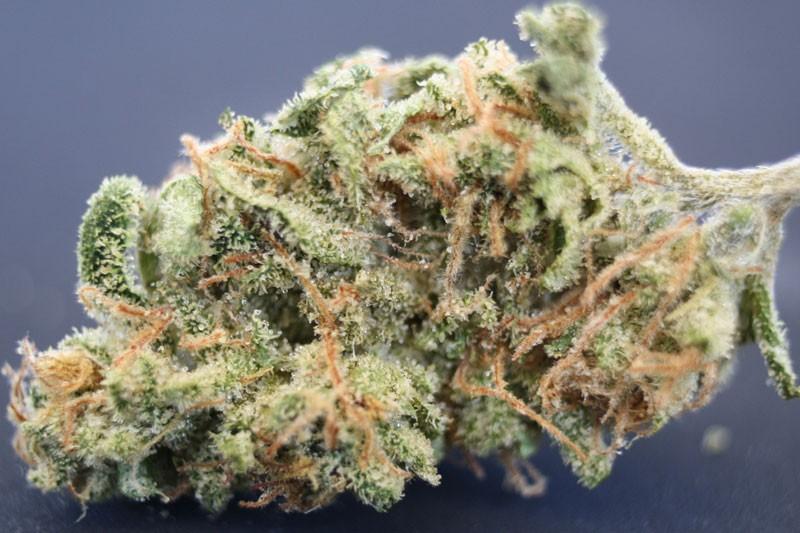 afgooey-weed-2